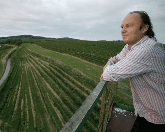Weingut Moric