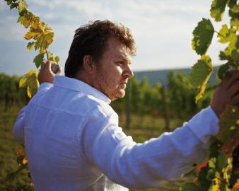Weingut Gesellmann Albert